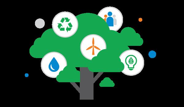 Environmental Sustainability at Image Cube